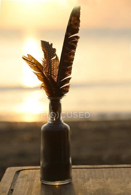 Vista de close-up de penas em uma garrafa de vidro na praia — Fotografia de Stock