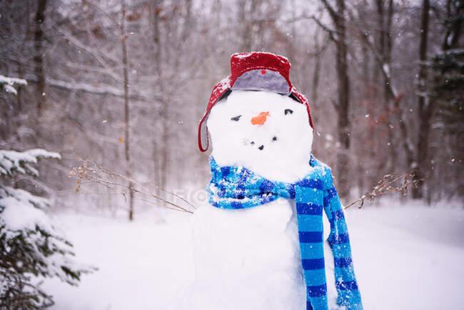 Вид снеговика в шляпе и шарфе — стоковое фото