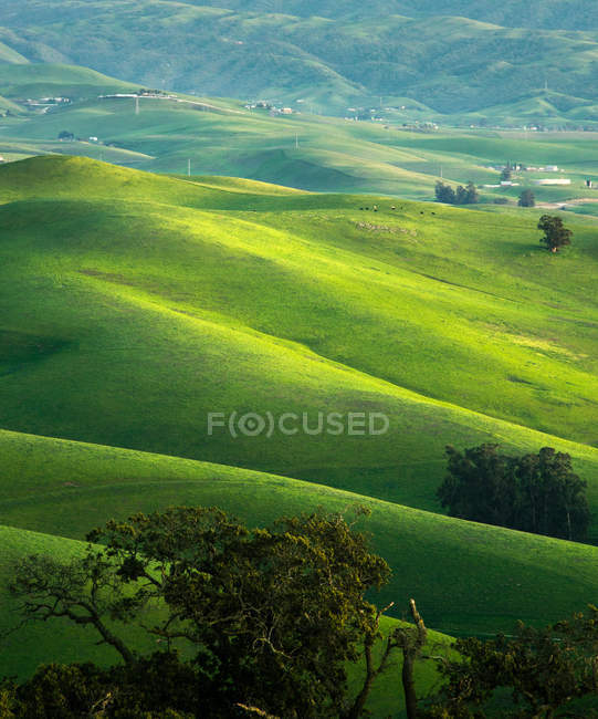 Живописный вид на зеленый пейзаж Ливермор холмы, Калифорния, Америка, США — стоковое фото