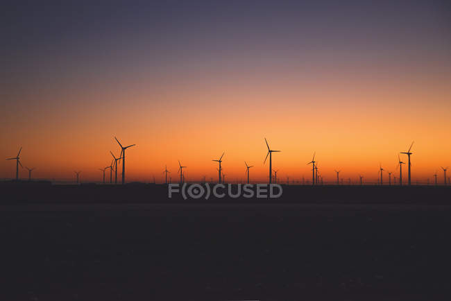 Wind turbines in a row at sunset, America, USA — Stock Photo