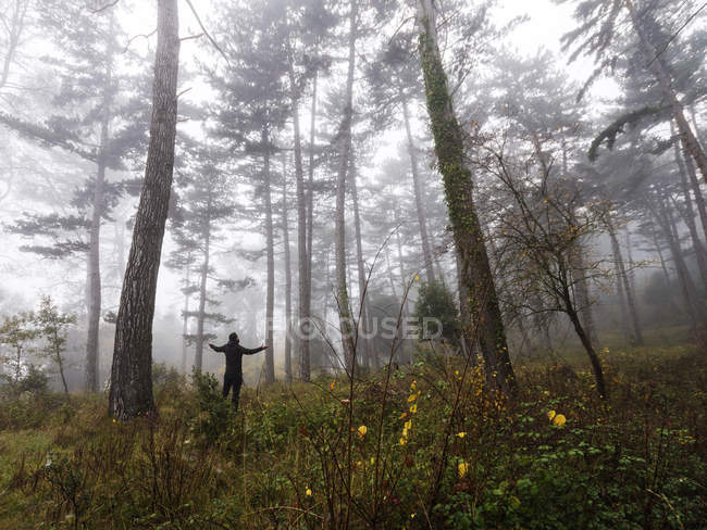 Man standing in forest with arms outstretched, Spain — Stock Photo