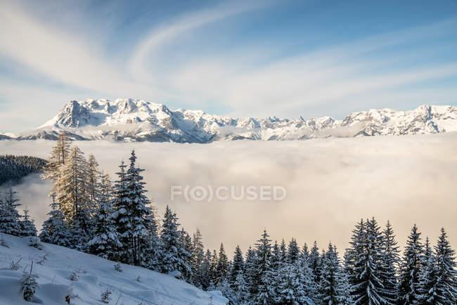 Сельских зимний пейзаж, Зальцбург, Австрия — стоковое фото