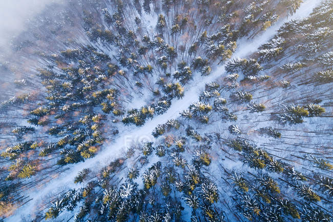 Aerial view of a road winding through a winter landscape, Salzburg, Austria — Stock Photo