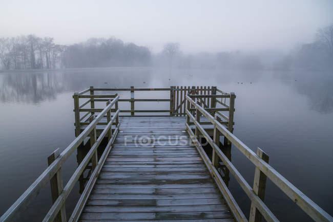 Деревянный пирс в тумане, Хэтфилд Форест, Эссекс, Англия, Великобритания — стоковое фото