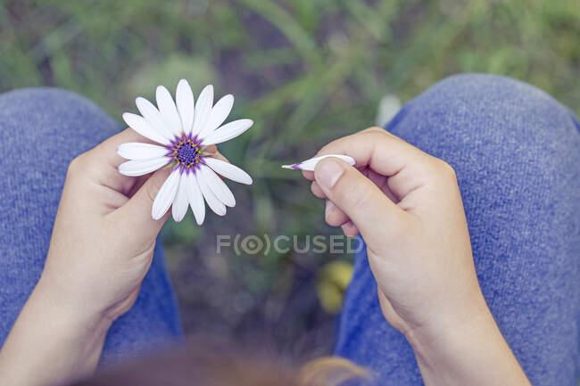 Ragazzo che toglie petali da un fiore — Foto stock