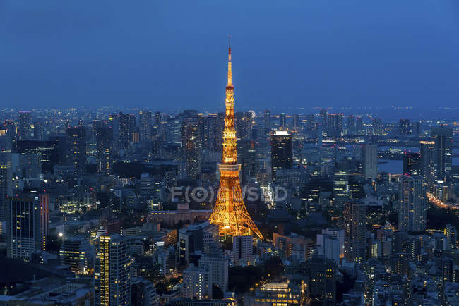 Scenic view of City skyline and Tokyo Tower, Tokyo, Japan — Photo de stock