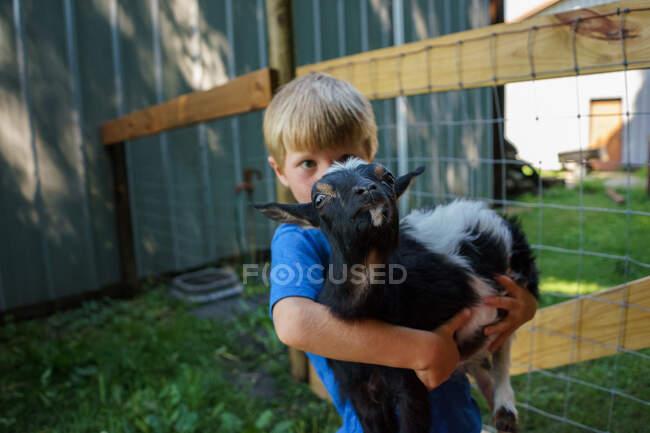 Niño llevando una cabra adorable en la granja - foto de stock