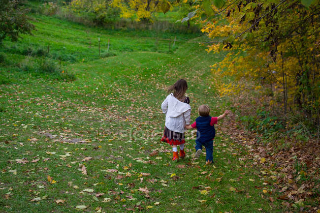 Two children holding hands running down a hill — Stock Photo