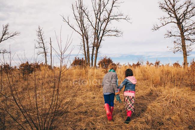 Мальчик и девочка держатся за руки, бегая по сельской местности — стоковое фото