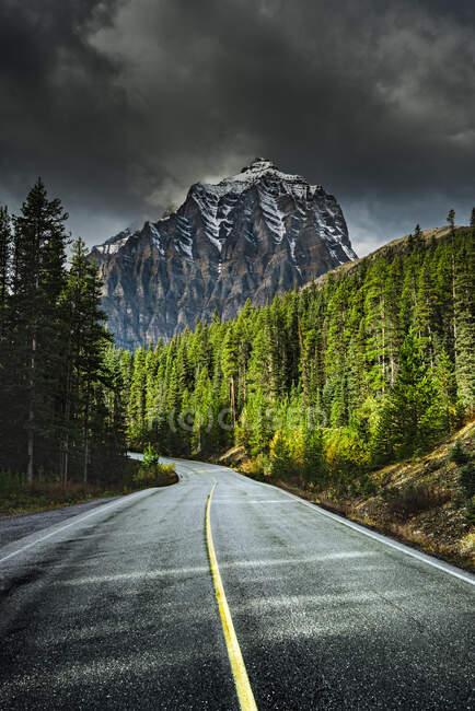 Дорога в горы, Банфф, Альберта, Канада — стоковое фото