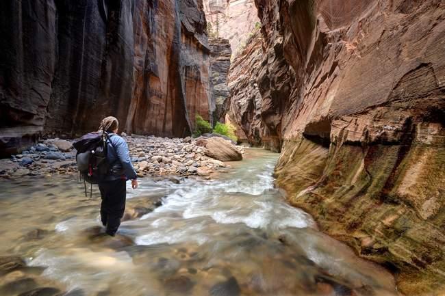 Hiker walking through river in the Narrows, Zion National Park, Utah, America, USA — Stock Photo