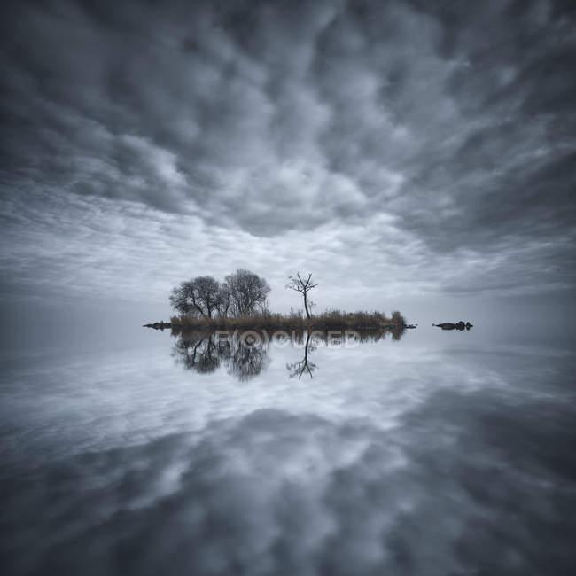 Small island in Lough Neagh lake, County Antrim, Northern Ireland, UK — Stock Photo
