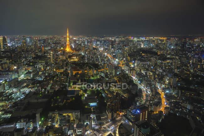 Vista panorámica del horizonte de la ciudad por la noche, Tokio, Japón - foto de stock