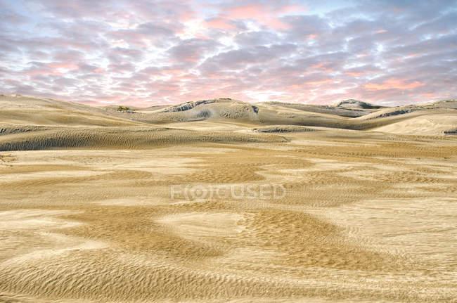 Scenic view of Lancelin Sand dunes, Perth,  Australia — Stock Photo