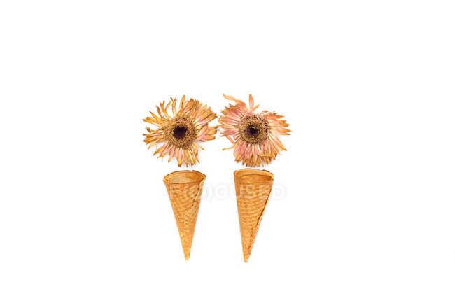 Conceptuels cornets de crème faites avec des fleurs — Photo de stock