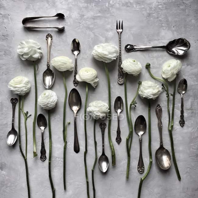 Primo piano vista di argenteria e fiori di ranuncolo bianco — Foto stock