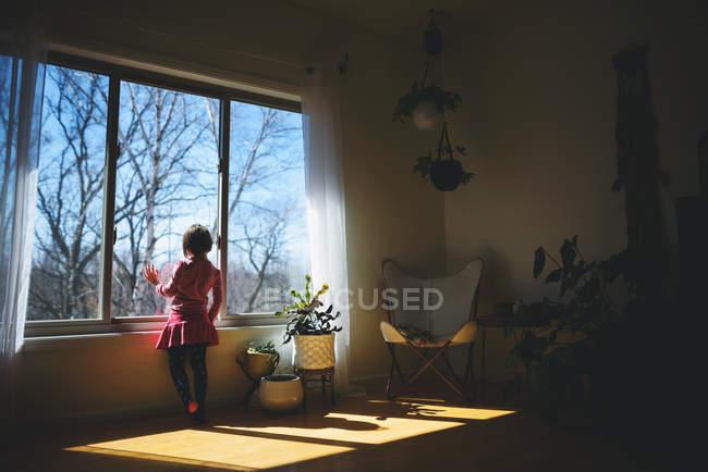 Вид сзади на девочку, выглядывающую из окна — стоковое фото
