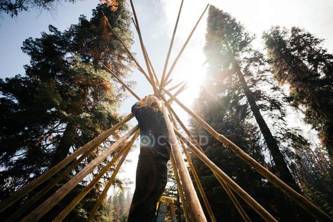 Man Building Tipi Structure, Sequoia National Forest, Califórnia, América, EUA — Fotografia de Stock