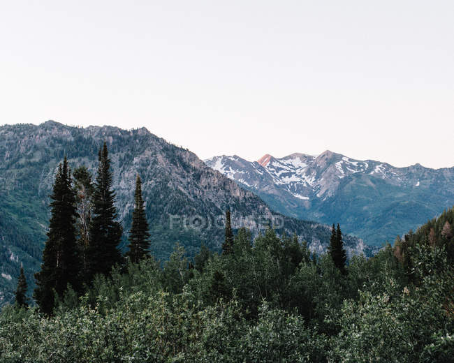 Scenic view of North American Fork Canyon, Utah, America, USA — Stock Photo