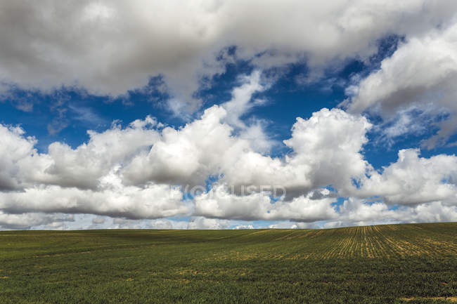 Scenic view of rural landscape under clouds, Spain — Stock Photo