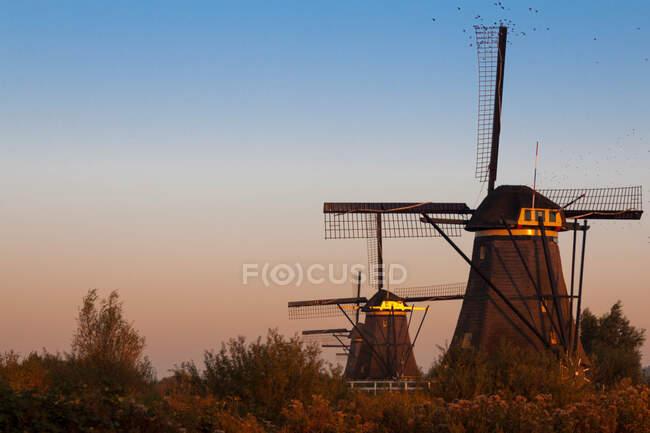 Kinderdijk è un comune dei Paesi Bassi di 1.629 abitanti situato nel land del Molenwaard. — Foto stock