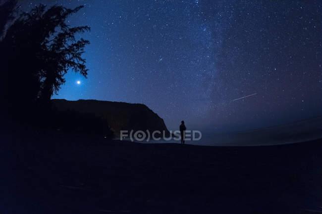 Silueta de un hombre de pie en la playa por la noche, Waipio Valley, Kukuihaele, Hamakua, Hawaii, América, EE.UU. - foto de stock
