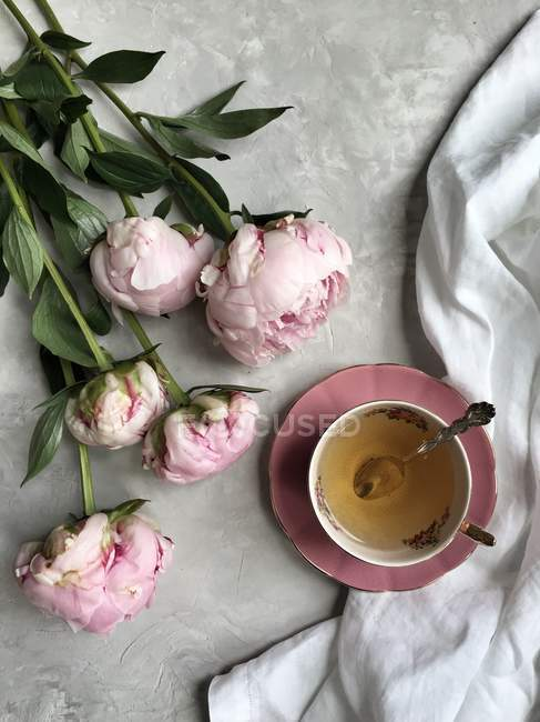 Closeup view of Pink peonies with a cup of tea — Stock Photo