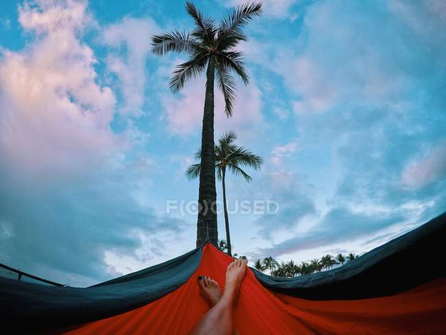 Cropped image of woman relaxing in a hammock, Oahu, Honolulu, Hawaii, America, USA — Stock Photo