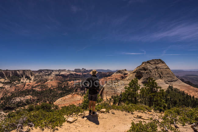 Rear view of hiker standing in Northgate Peaks area of Zion National Park, Utah, America, USA — Stock Photo