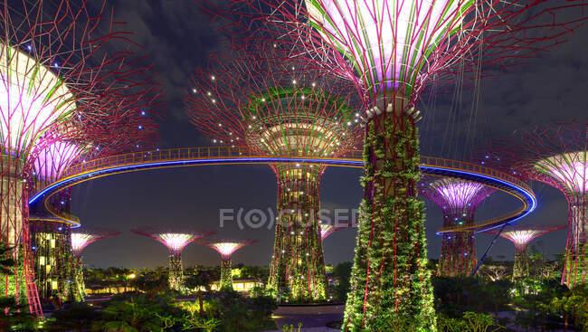 Нічний вид на супердерево гай у садах Бей, Сінгапур — стокове фото