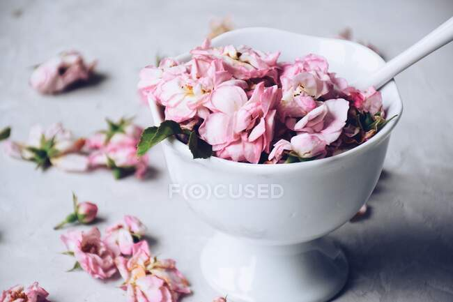 Closeup view of Pink roses in a bowl — Stock Photo