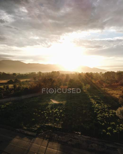 Scenic view of rural landscape at sunrise, Pisa, Tuscany, Italy — Stock Photo