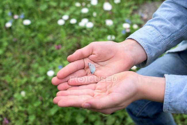 Garçon tenant un papillon dans ses mains — Photo de stock