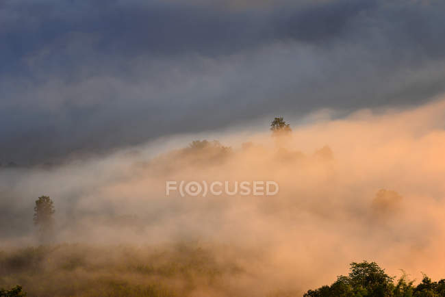 Scenic view of Mist over mountains, Thailand — Stock Photo
