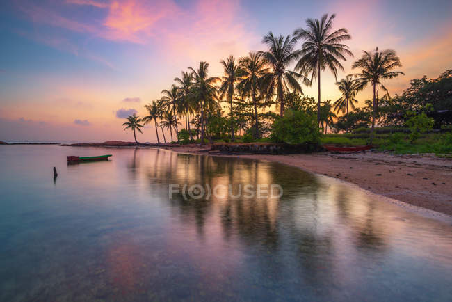 Scenic view of Palm trees on beach, Pulau Batam, Batam City, Riau Islands, Indonesia — Stock Photo