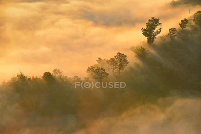 Vista panorámica de niebla sobre las montañas, Tailandia - foto de stock