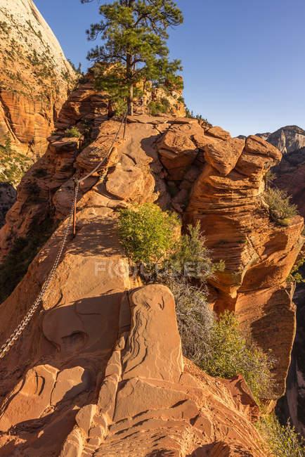 Zion national park, Zion Canyon — Stock Photo