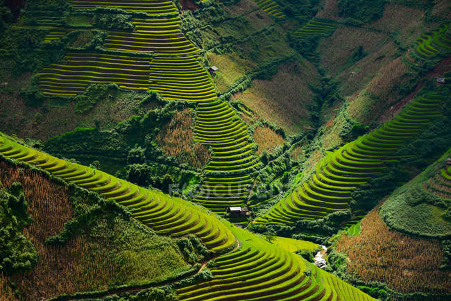 Vista panorâmica do belo terraço de arroz verde durante o pôr do sol, Vietnã — Fotografia de Stock