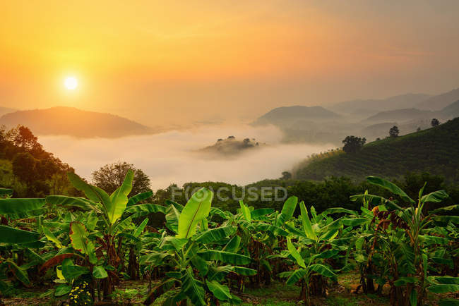 Scenic view of sun over mountain mist in sunrise,mist on sunrise,mist over mountain during sunrise — стокове фото