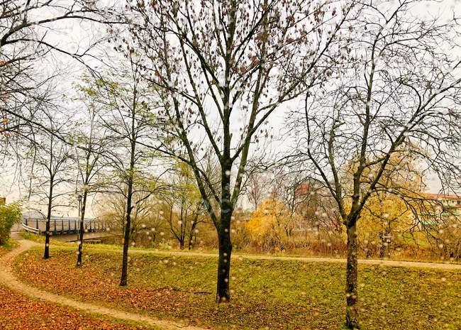 Aussichtsreiche Aussicht auf Fußweg im öffentlichen Park — Stockfoto