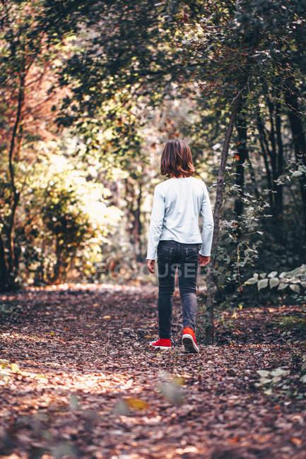 Vue arrière du garçon marchant dans la forêt — Photo de stock