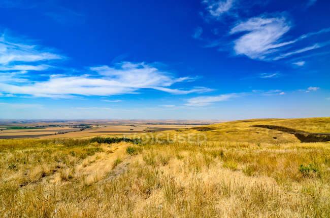 Vista panorámica de paisaje Rural, Alberta, Canadá - foto de stock