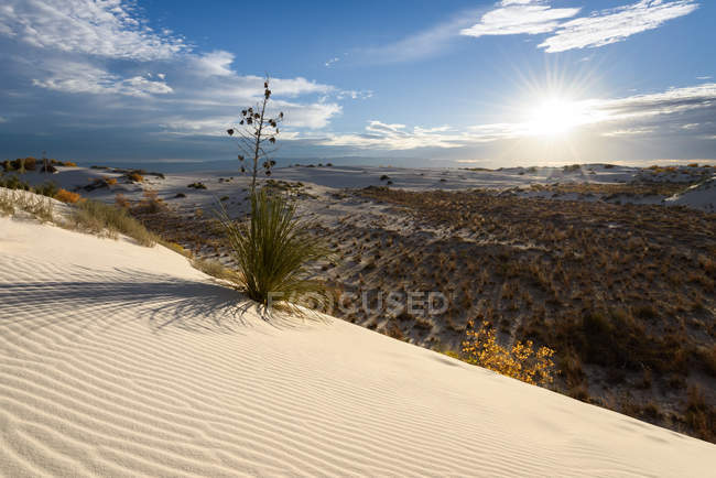 Scenic view of White Sands National Monument, New Mexico, America, USA — Stock Photo