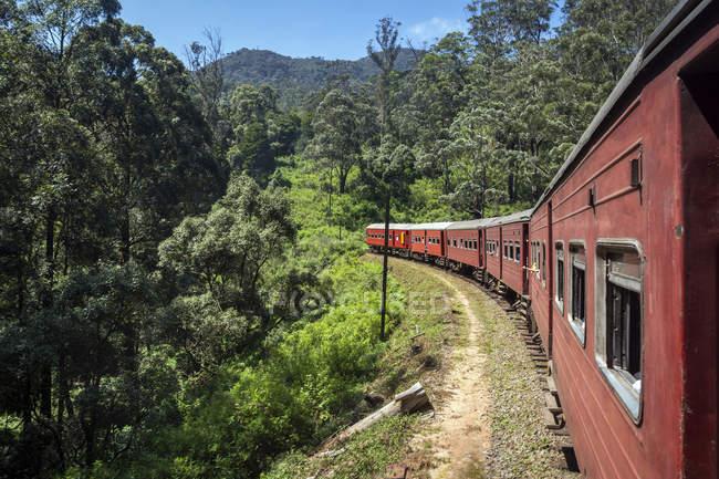 Treno che attraversa il paesaggio rurale, Nuwara Eliya, Provincia Centrale, Sri Lanka — Foto stock