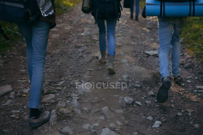 Drei Personen auf Fußweg im Wald, Ukraine — Stockfoto