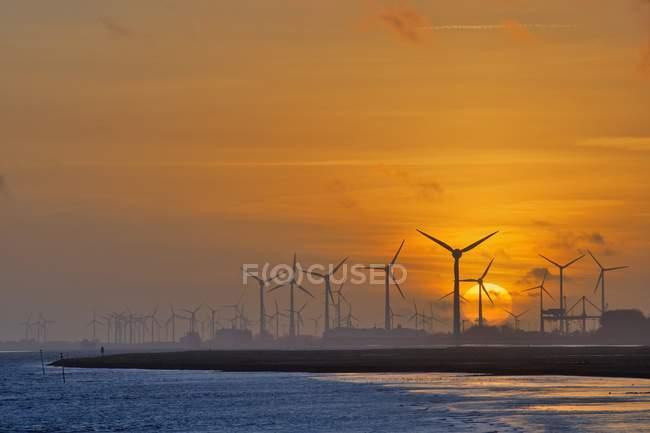 Turbinas eólicas na margem do rio Ems ao pôr-do-sol, Alemanha — Fotografia de Stock
