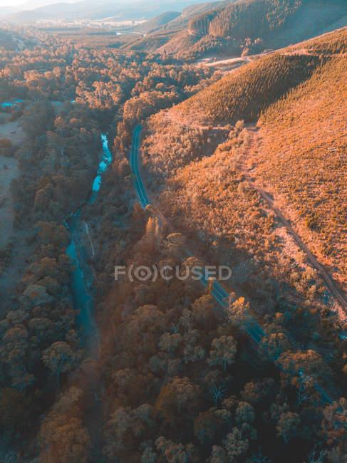 Дорога через горный ландшафт, Брайт, Виктория, Австралия — стоковое фото