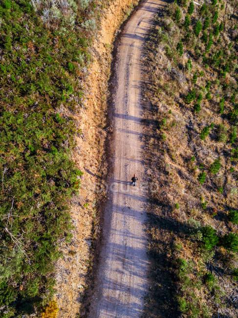 Чоловік, що йде по ґрунтовій дорозі (Ванділігон, Вікторія, Австралія). — стокове фото