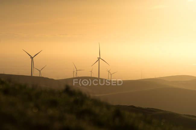 Вітрові турбіни на заході сонця, США, Уса. — стокове фото