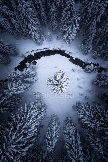 Veduta aerea di un fiume che scorre attraverso una foresta invernale, Zauchensee, Salisburgo, Austria — Foto stock